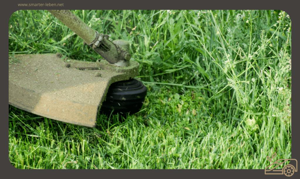 Der perfekte Rahmen für deinen Rasen - Mit dem Rasentrimmer Rasenkanten schneiden