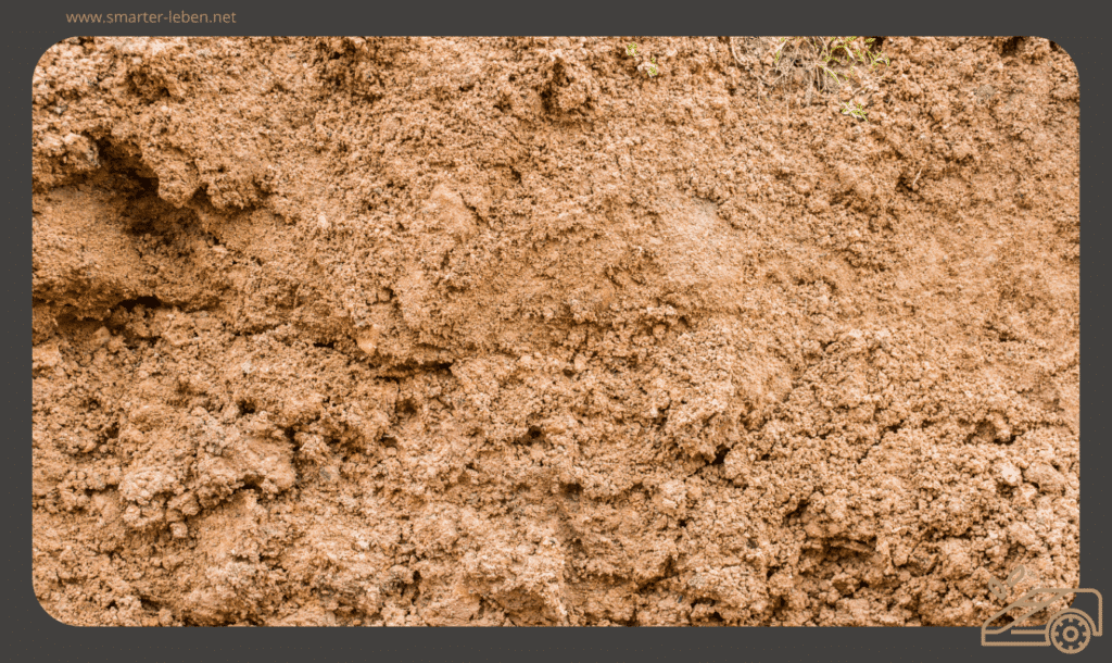 Lehmiger Boden im Garten - Rasen richtig anlegen